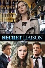 Secret Liaison (2013) Box Art