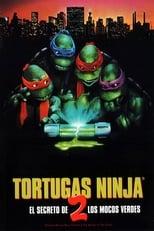 VER Las tortugas ninja II: El secreto de los mocos verdes (1991) Online Gratis HD