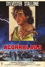 VER Acorralado (1982) Online Gratis HD