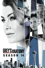 Anatomia de Grey 14ª Temporada Completa Torrent Dublada e Legendada
