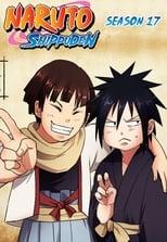 Naruto Shippūden: Season 17 (2014)