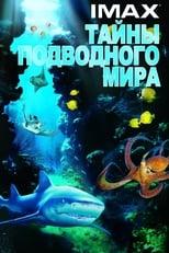 Fundo do Mar 3D (2006) Torrent Dublado
