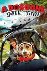 Image A Doggone Hollywood (2017)