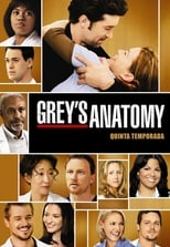 A Anatomia de Grey 5ª Temporada Completa Torrent Dublada e Legendada