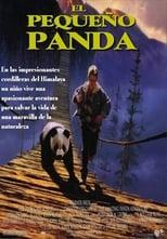 El pequeño panda