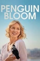 Penguin Bloom (2021) Torrent Dublado e Legendado