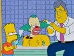 Os Simpsons: 9 Temporada, Episódio 15