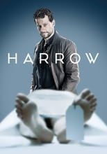 Harrow 2ª Temporada Completa Torrent Legendada