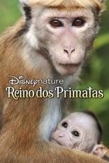 O Reino dos Primatas (2015) Torrent Dublado e Legendado