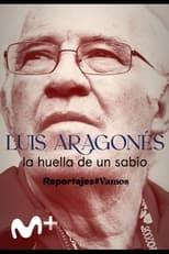 Luis Aragonés, la huella de un sabio