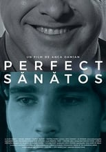 Image Perfect Sanatos 2017