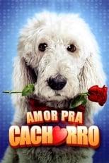 Amor Pra Cachorro (2014) Torrent Dublado e Legendado