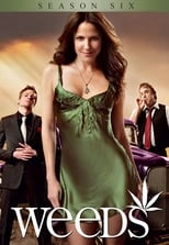Weeds: Season 6 (2010)