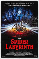 Spider Labyrinth - In den Fängen der Todestarantel