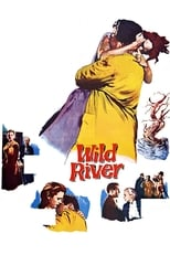 Official movie poster for Wild River (1960)