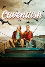 Cavendish 1x4