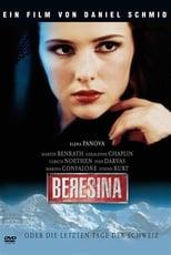 Beresina oder Die letzten Tage der Schweiz