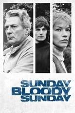 Sunday, Bloody Sunday (1971) Box Art