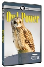 Owl Power (2015) Torrent Legendado