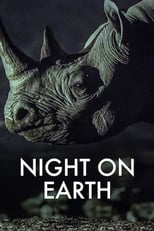 Night on Earth Image