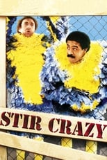 Stir Crazy (1980) Box Art