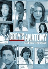 Anatomia de Grey 2ª Temporada Completa Torrent Dublada e Legendada