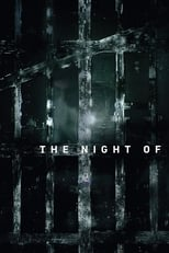 The Night Of 1ª Temporada Completa Torrent Dublada e Legendada