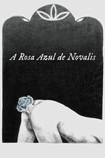 A Rosa Azul de Novalis (2018) Torrent Legendado