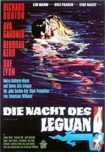 Die Nacht des Leguan