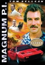 Magnum 2ª Temporada Completa Torrent Dublada e Legendada