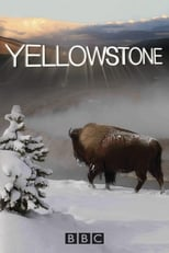 Yellowstone 2ª Temporada Completa Torrent Legendada