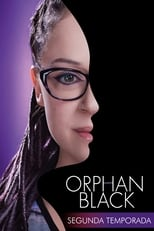 Orphan Black 2ª Temporada Completa Torrent Dublada e Legendada