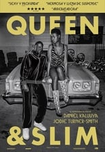 VER Queen y Slim (2019) Online Gratis HD