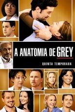 Anatomia de Grey 5ª Temporada Completa Torrent Dublada e Legendada