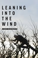 Leaning Into the Wind (2017) Box Art