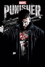 Marvel's The Punisher Saison 1 MULTI