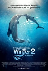 L'Incroyable Histoire de Winter le dauphin 2  (Dolphin Tale 2) streaming complet VF HD