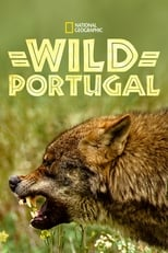 Poster Image for Movie - Wild Portugal