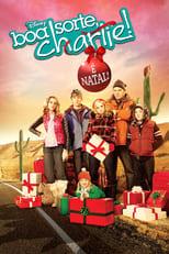 Boa Sorte, Charlie! É Natal! (2011) Torrent Legendado