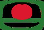 Bangladesh Television