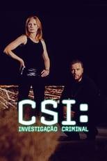 CSI Investigação Criminal 5ª Temporada Completa Torrent Dublada