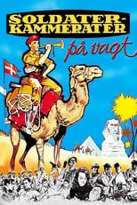 100 Mann und ein Kamel