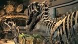 Mundo Mistério: 1 Temporada, A Grande Extinção