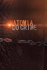 Anatomia do Crime 2ª Temporada Completa Torrent Nacional