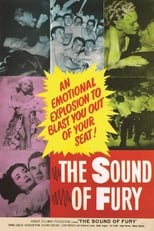 The Sound of Fury (1950) Box Art