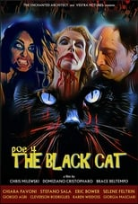 POE 4 - The Black Cat