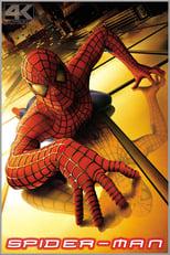 Spider-Man: Peter Parker ist nicht gerade angesehen an seiner Uni, denn er ist schmächtig und ungeschickt, was seine Chancen beim Mädchen seiner Träume, Mary Jane nicht gerade erhöht. Als er eines Tages jedoch von einer genmanipulierten Spinne gebissen wird, wacht er am nächsten Morgen auf und findet seine Sinne geschärft vor und entwickelt auch weitere übermenschliche, aber sehr spinnenähnliche Fähigkeiten. Nachdem er damit zunächst sein Traummädchen beeindruckt hat, wächst er schon bald zu dem maskierten Helden Spider-Man heran, spätestens als ein Superschurke namens Grüner Kobold, der die Mr.Hyde-Variante des Wissenschaftlers Norman Osborn ist, die Stadt bedroht...