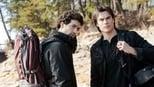 Diários de um Vampiro: 4 Temporada, Selva