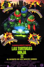 ver Las tortugas ninja II: El secreto de los mocos verdes por internet