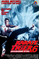 Karate Tiger 6 - Entscheidung in Rio
